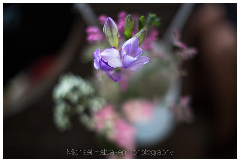 michael.habraken.photography (124 van 63)-1.jpg